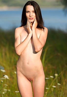 Lost In The Meadow featuring Adel Morel by Marlene
